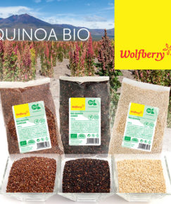 quinoa_nahlad